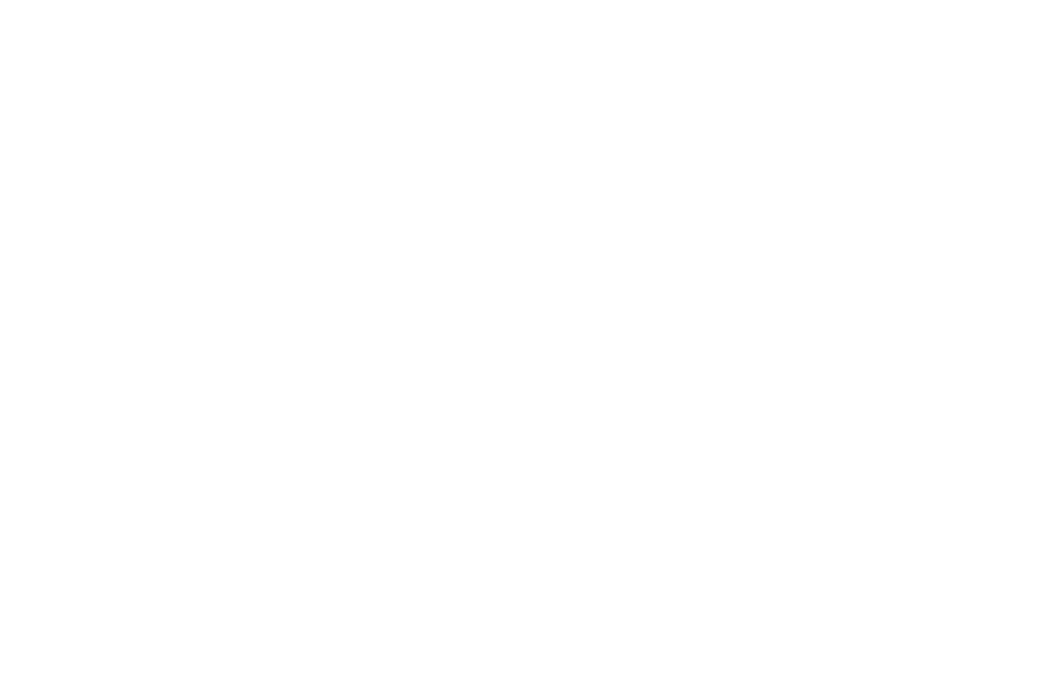 Videograaf // Carolien te Wierik